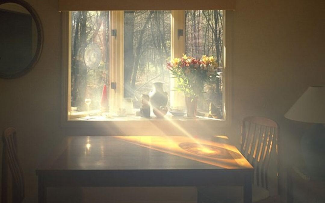 Sunbeams: Life is a symphony1